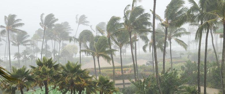 Wind Mitigation Inspection Melbourne & Palm Bay